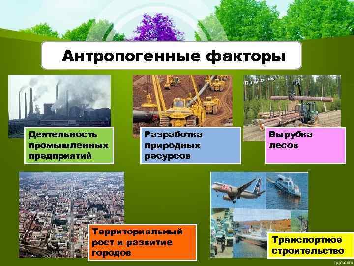 Антропогенные факторы Деятельность промышленных предприятий Разработка природных ресурсов Территориальный рост и развитие городов Вырубка