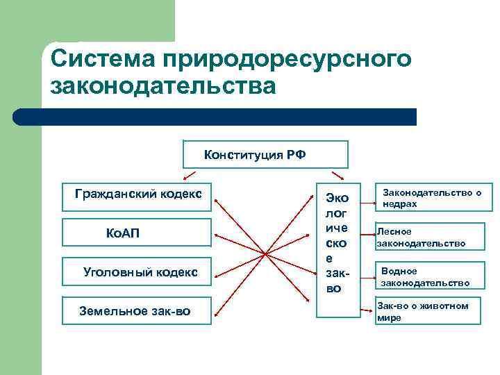 Система природоресурсного законодательства Конституция РФ Гражданский кодекс Ко. АП Уголовный кодекс Земельное зак-во Эко