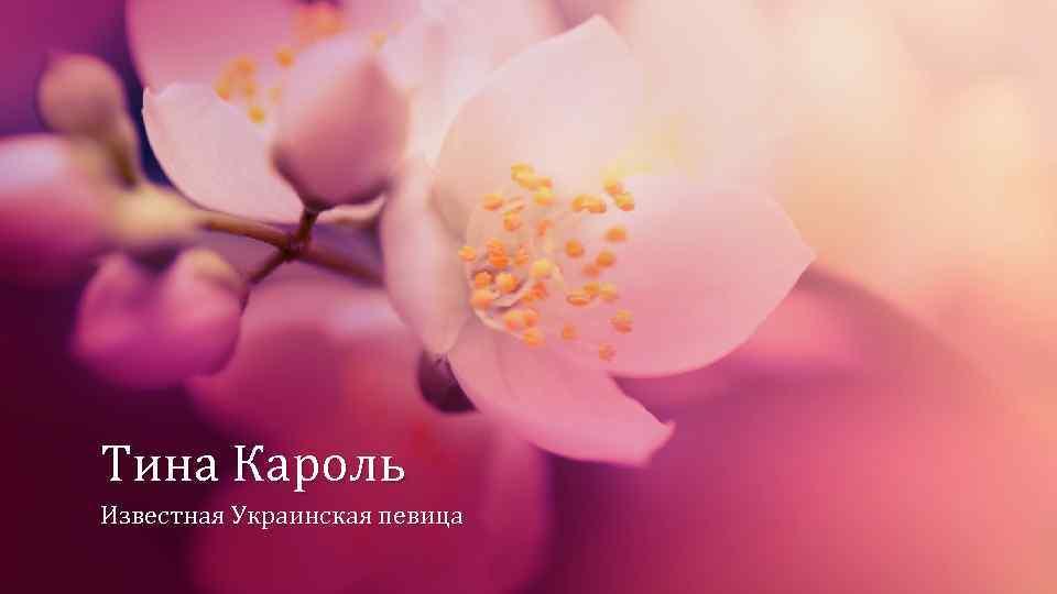 Тина Кароль Известная Украинская певица