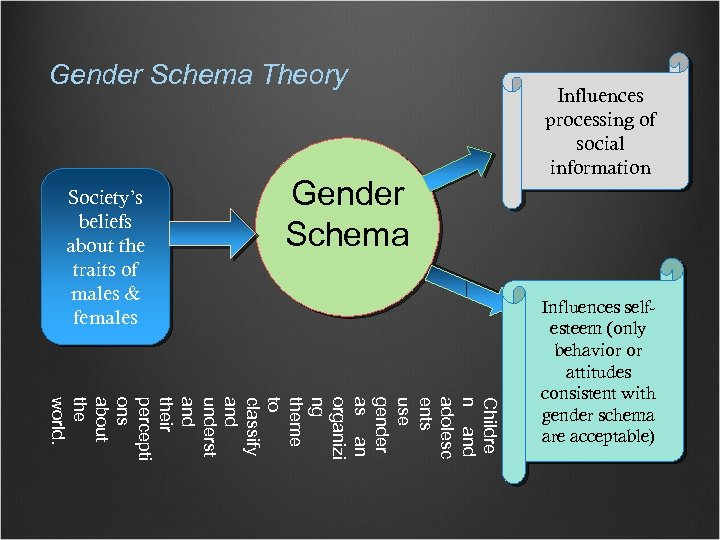 Gender Schema Theory Society's beliefs about the traits of males & females Gender Schema