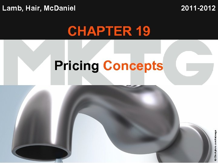 Lamb, Hair, Mc. Daniel 2011 -2012 CHAPTER 19 Chapter 19 Copyright © 2012 by