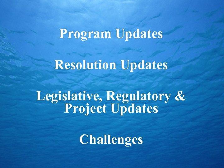 Program Updates Resolution Updates Legislative, Regulatory & Project Updates Challenges