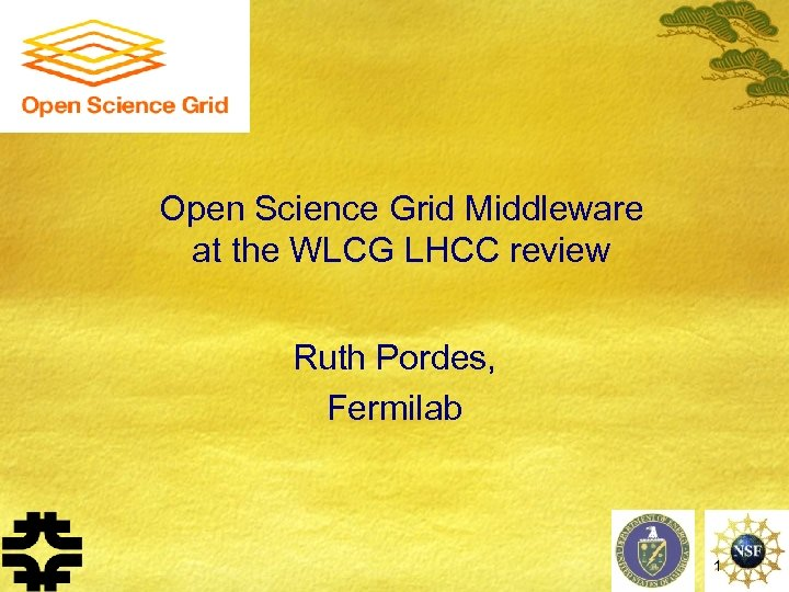 Open Science Grid Middleware at the WLCG LHCC review Ruth Pordes, Fermilab 1
