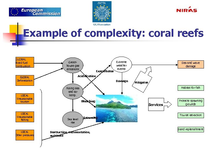 Example of complexity: coral reefs GLOBAL fossil fuel combustion GLOBAL Deforestation LOCAL Unsustainable tourism