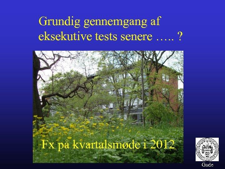 Grundig gennemgang af eksekutive tests senere …. . ? Fx på kvartalsmøde i 2012