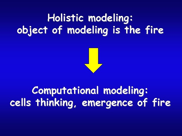 Holistic modeling: object of modeling is the fire Computational modeling: cells thinking, emergence of