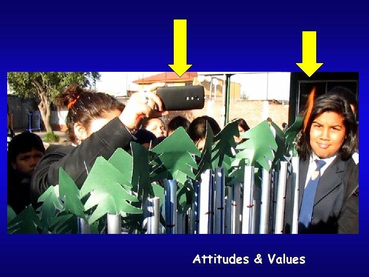 Attitudes & Values