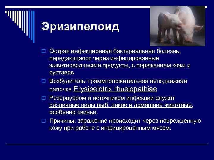 Эризипелоид o Острая инфекционная бактериальная болезнь, передающаяся через инфицированные животноводческие продукты, с поражением кожи