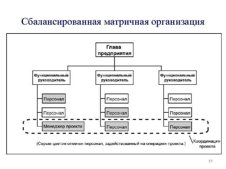Сбалансированная матричная организация 57