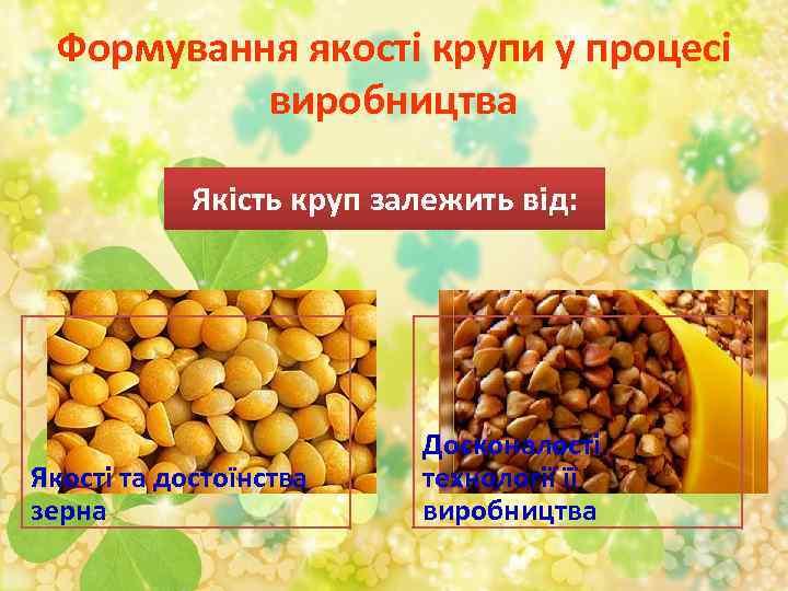 Формування якості крупи у процесі виробництва Якість круп залежить від: Якості та достоїнства зерна