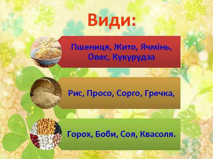 Види: Пшениця, Жито, Ячмінь, Овес, Кукурудза Рис, Просо, Сорго, Гречка, Горох, Боби, Соя, Квасоля.