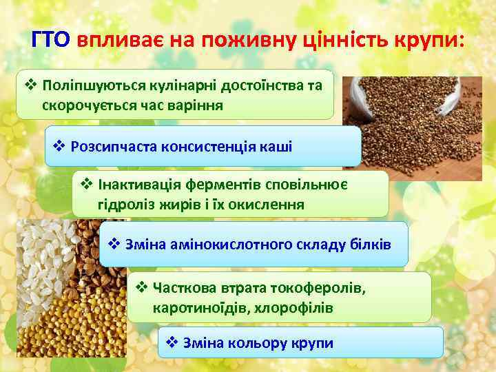 ГТО впливає на поживну цінність крупи: v Поліпшуються кулінарні достоїнства та скорочується час варіння