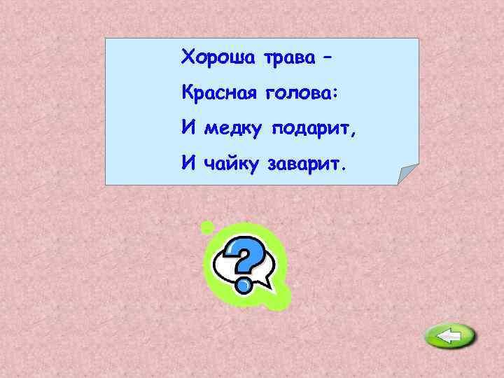 Хороша трава – Красная голова: И медку подарит, И чайку заварит. Иван-чай.