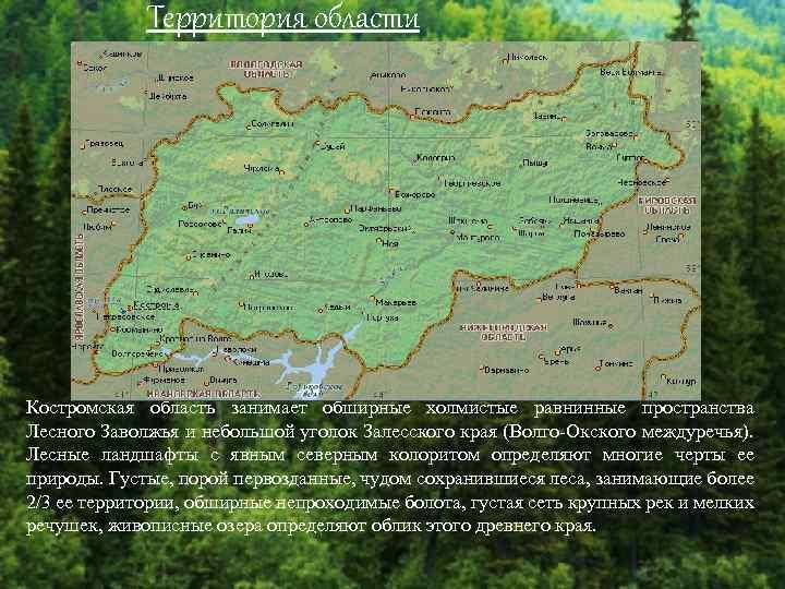 Территория области Костромская область занимает обширные холмистые равнинные пространства Лесного Заволжья и небольшой уголок