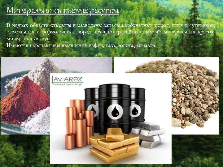 Минерально-сырьевые ресурсы В недрах области открыты и разведаны запасы карбонатных пород, глин и суглинков,