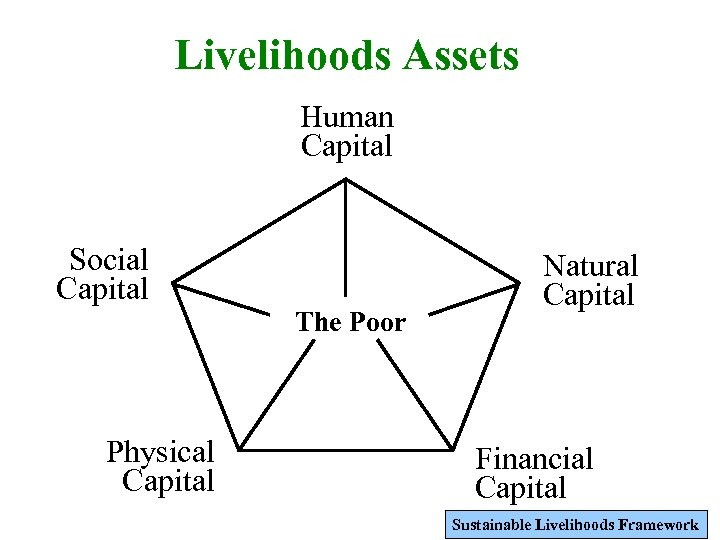 Livelihoods Assets Human Capital Social Capital Physical Capital The Poor Natural Capital Financial Capital