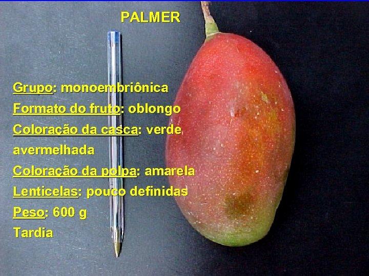 PALMER Grupo: monoembriônica Formato do fruto: oblongo Coloração da casca: verde avermelhada Coloração da