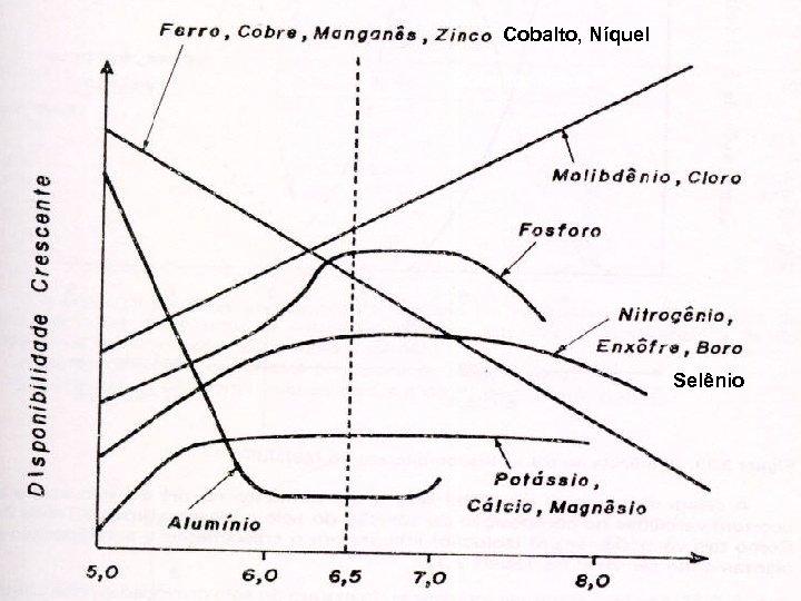, Cobalto, Níquel Selênio
