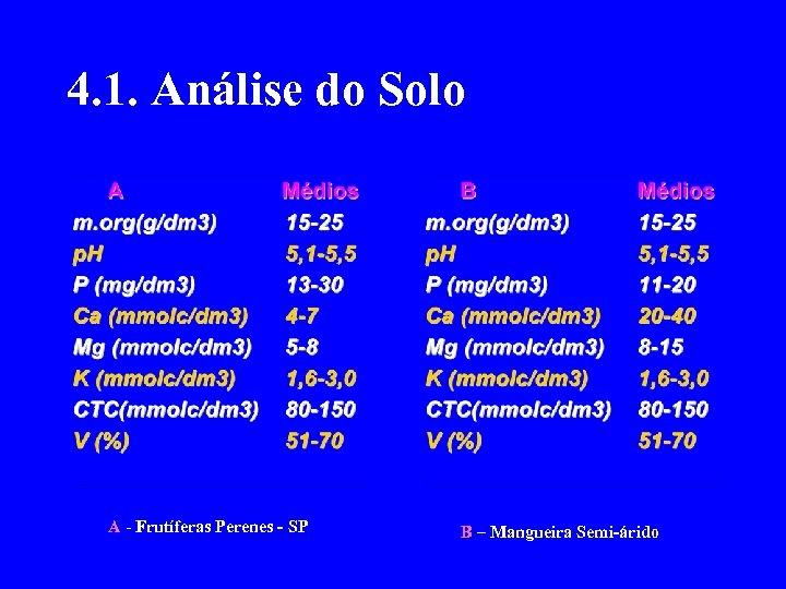 4. 1. Análise do Solo A - Frutíferas Perenes - SP B – Mangueira