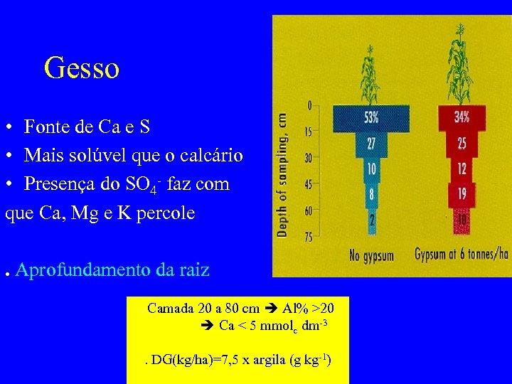 Gesso • Fonte de Ca e S • Mais solúvel que o calcário •