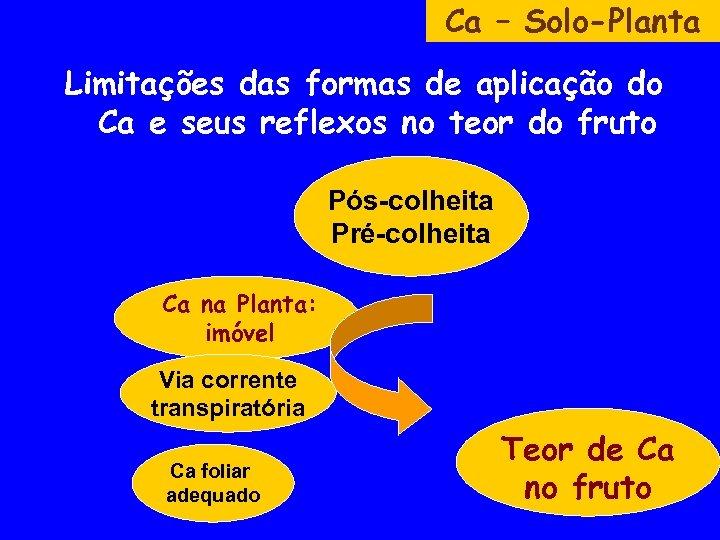 Ca – Solo-Planta Limitações das formas de aplicação do Ca e seus reflexos no