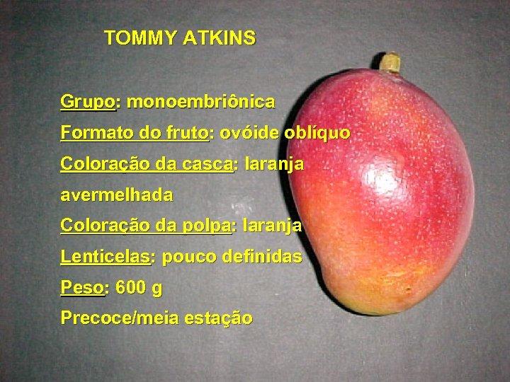 TOMMY ATKINS Grupo: monoembriônica Formato do fruto: ovóide oblíquo Coloração da casca: laranja avermelhada