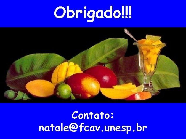 Obrigado!!! Contato: natale@fcav. unesp. br