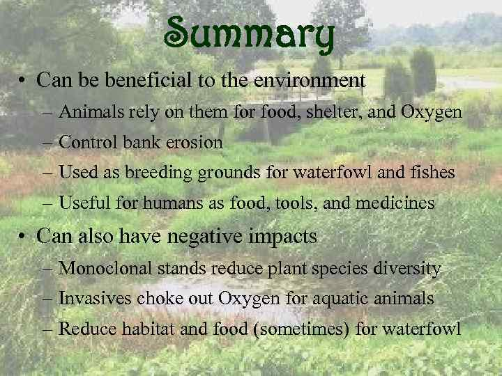 Summary • Can be beneficial to the environment – Animals rely on them for