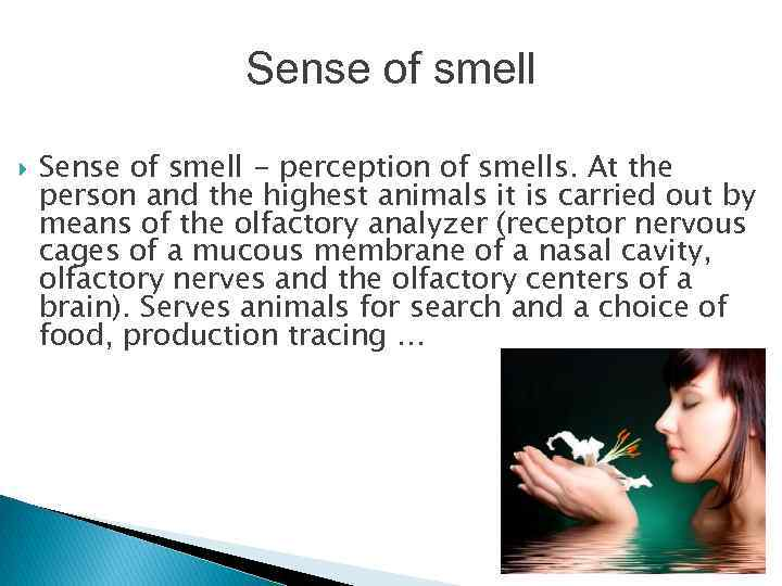 sense perception 123423 Looking for online definition of sense perception in the medical dictionary sense perception explanation free what is sense perception meaning of sense perception.
