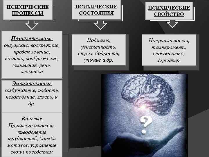 ПСИХИЧЕСКИЕ ПРОЦЕССЫ Познавательные ощущение, восприятие, представление, память, воображение, мышление, речь, внимание Эмоциональные возбуждение, радость,