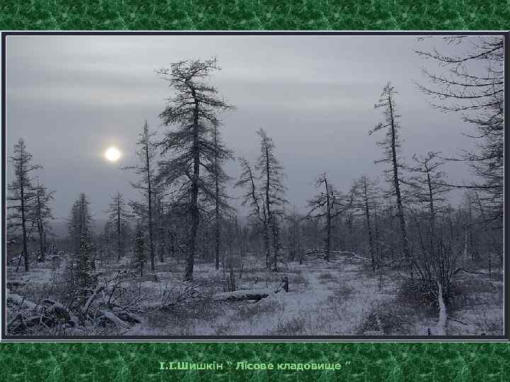 """І. І. Шишкін """" Лісове кладовище """""""