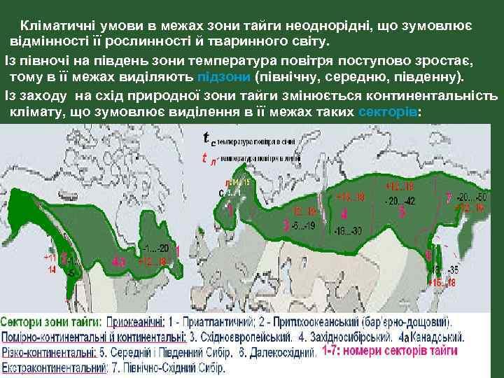 Кліматичні умови в межах зони тайги неоднорідні, що зумовлює відмінності її рослинності й тваринного
