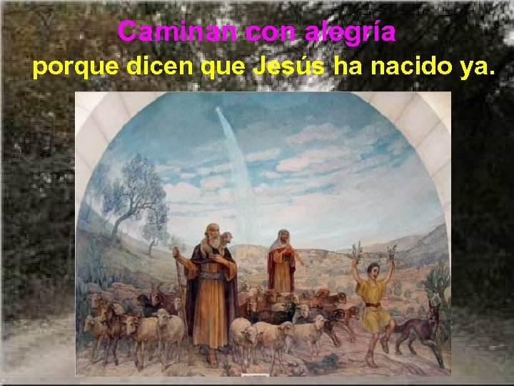 Caminan con alegría porque dicen que Jesús ha nacido ya.