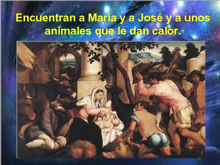 Encuentran a María y a José y a unos animales que le dan calor.