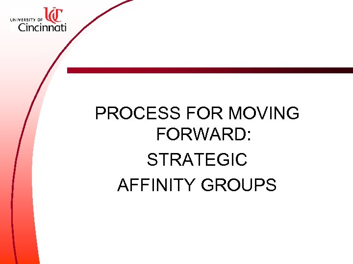 PROCESS FOR MOVING FORWARD: STRATEGIC AFFINITY GROUPS