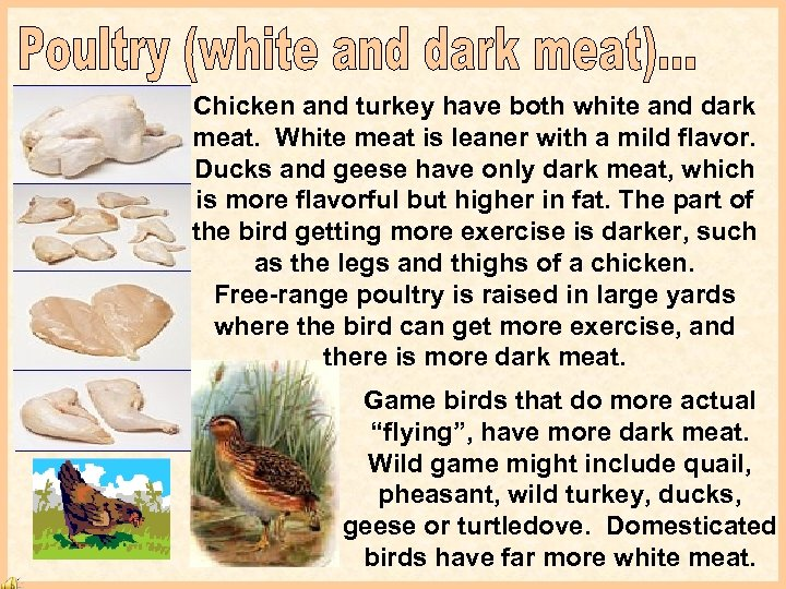 Chicken and turkey have both white and dark meat. White meat is leaner with