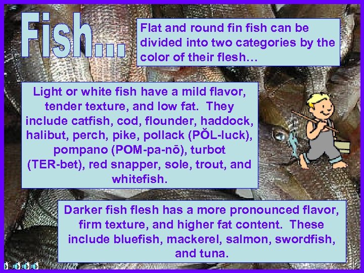 Flat and round fin fish can be divided into two categories by the color