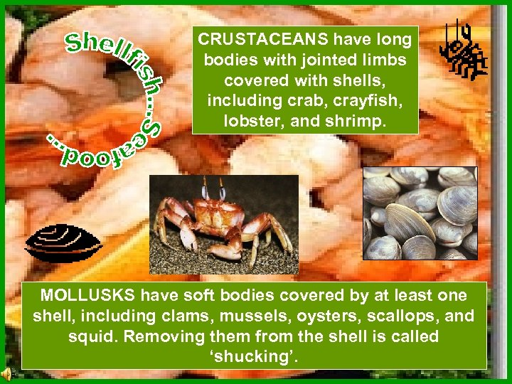 CRUSTACEANS have long bodies with jointed limbs covered with shells, including crab, crayfish, lobster,