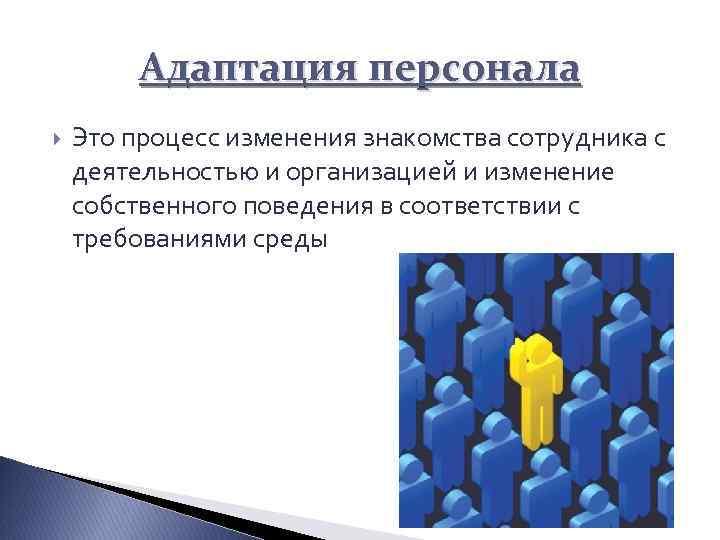 Адаптация персонала Это процесс изменения знакомства сотрудника с деятельностью и организацией и изменение собственного