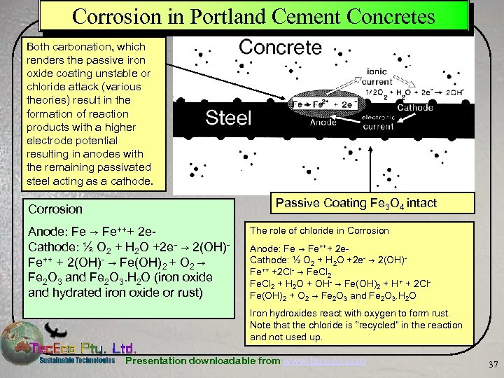 Corrosion in Portland Cement Concretes Both carbonation, which renders the passive iron oxide coating