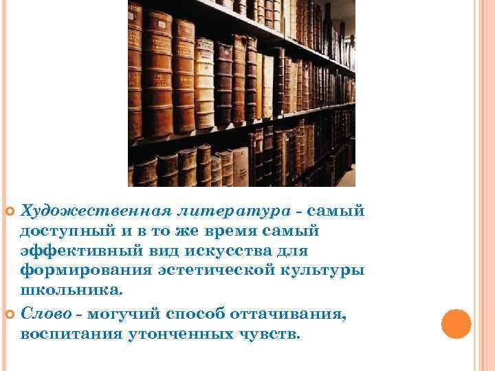 Художественная литература - самый доступный и в то же время самый эффективный вид искусства