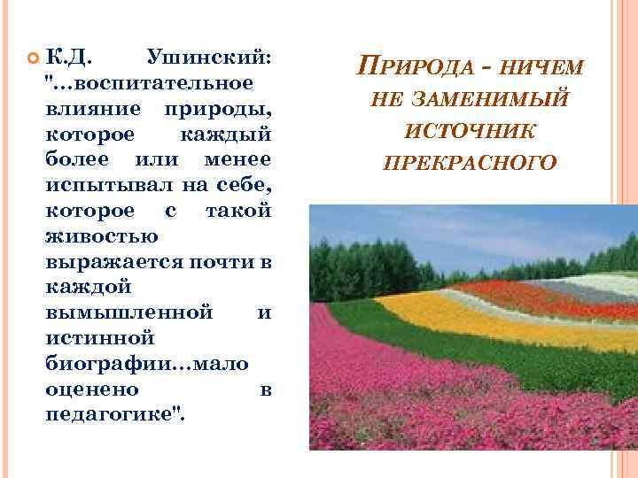 К. Д. Ушинский: