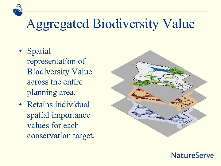 Aggregated Biodiversity Value • Spatial representation of Biodiversity Value across the entire planning area.