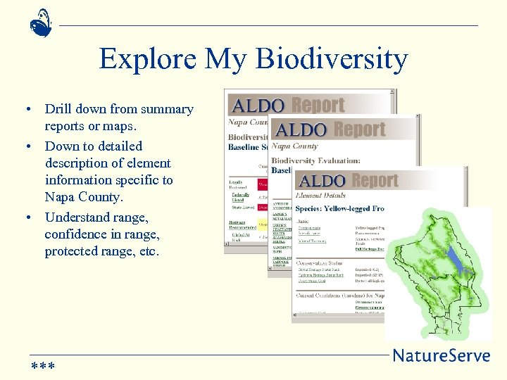 Explore My Biodiversity • Drill down from summary reports or maps. • Down to