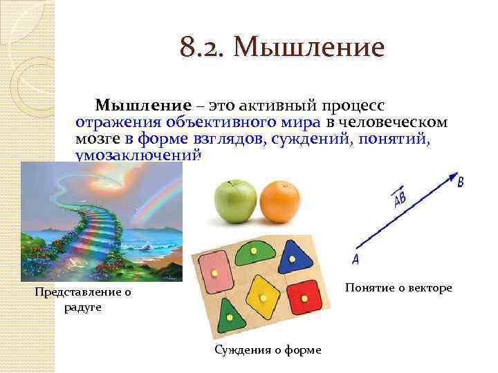 8. 2. Мышление – это активный процесс отражения объективного мира в человеческом мозге в