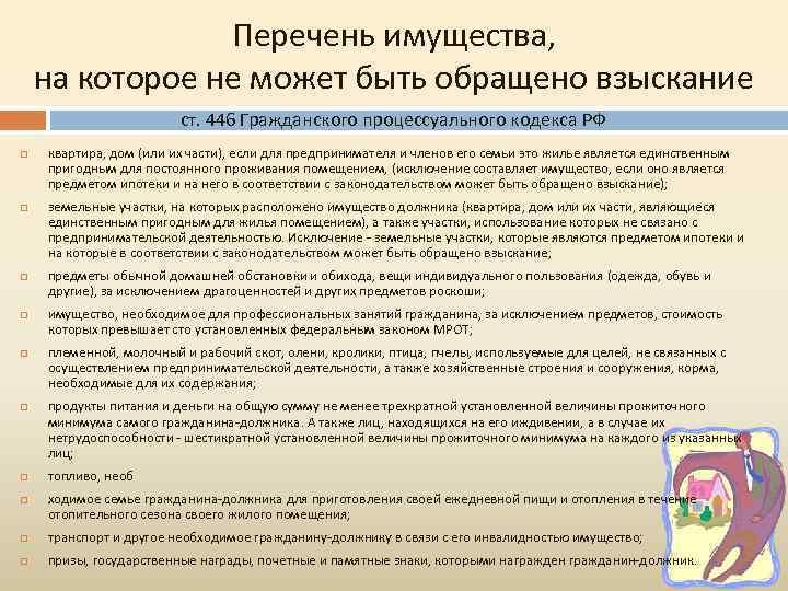 Перечень имущества, на которое не может быть обращено взыскание ст. 446 Гражданского процессуального кодекса