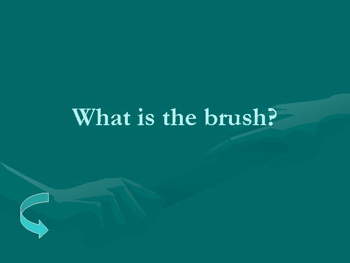 What is the brush?