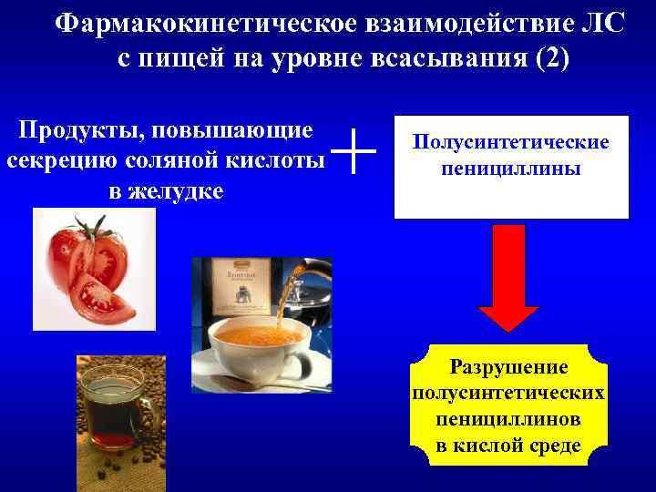 Фармакокинетическое взаимодействие ЛС с пищей на уровне всасывания (2) Продукты, повышающие секрецию соляной кислоты