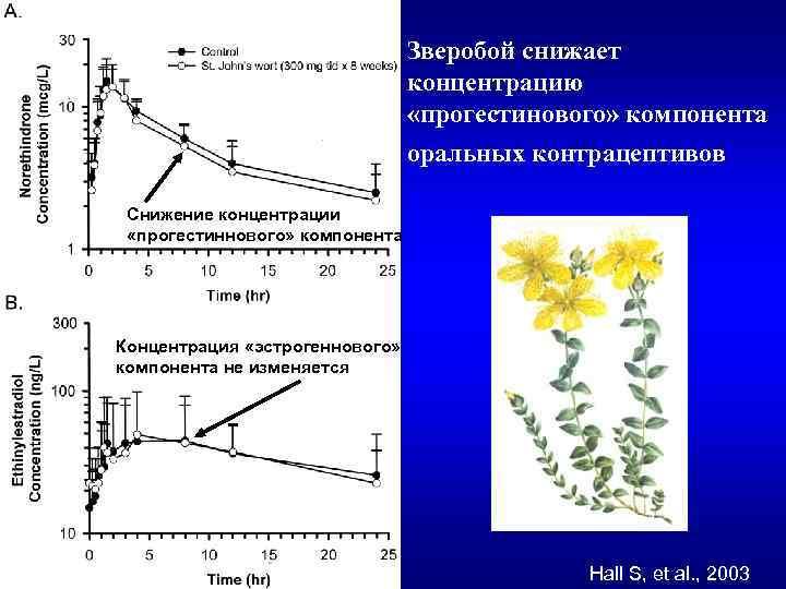Зверобой снижает концентрацию «прогестинового» компонента оральных контрацептивов Снижение концентрации «прогестиннового» компонента Концентрация «эстрогеннового» компонента