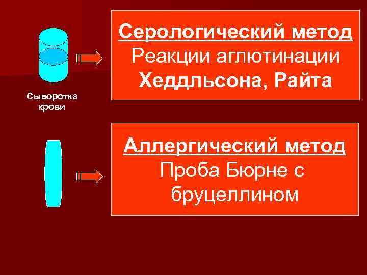 Сыворотка крови Серологический метод Реакции аглютинации Хеддльсона, Райта Аллергический метод Проба Бюрне с бруцеллином